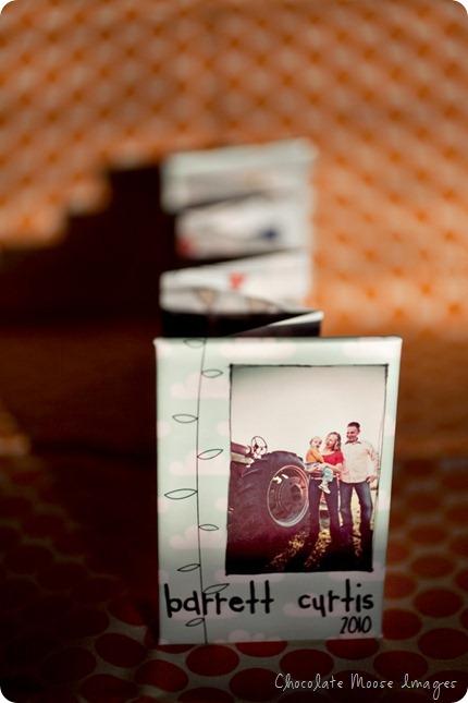 chocolate moose images, pet portrait photographer, minneapolis pets, album