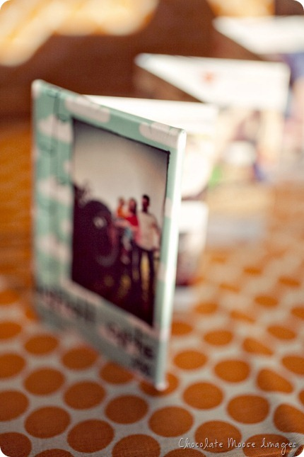 chocolate moose images, pet portrait photographer, minneapolis pets, mini album