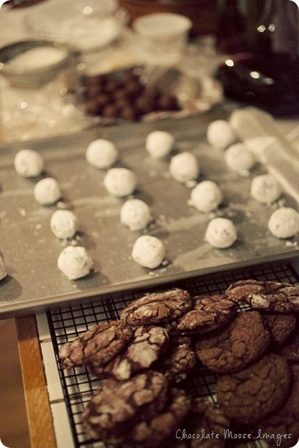 chocolate moose images, cookies, baking, minneapolis, pet portrait photographer