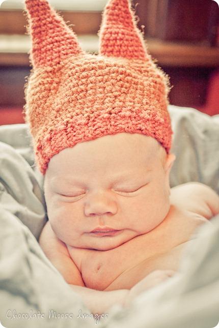 chocolate moose images, omaha baby photographer, minneapolis pet photographer, babies, families, iowa, baby hat, baby portraits