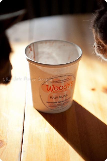 chocolate moose images, minneapolis pet photographer, woody's pet food deli, cat food, diet, pet food, meat, minnesota, cat portraits, mini muffins, meat muffins, cats