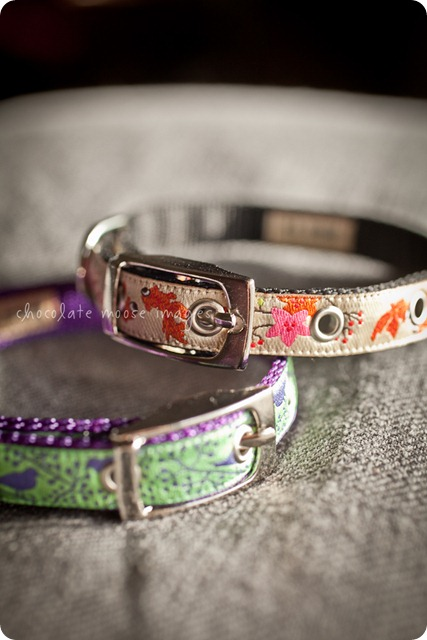 The girls get their new collars in the mail from restowe